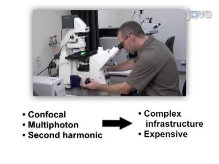 High-resolution Fiber-optic Microendoscopy for in situ