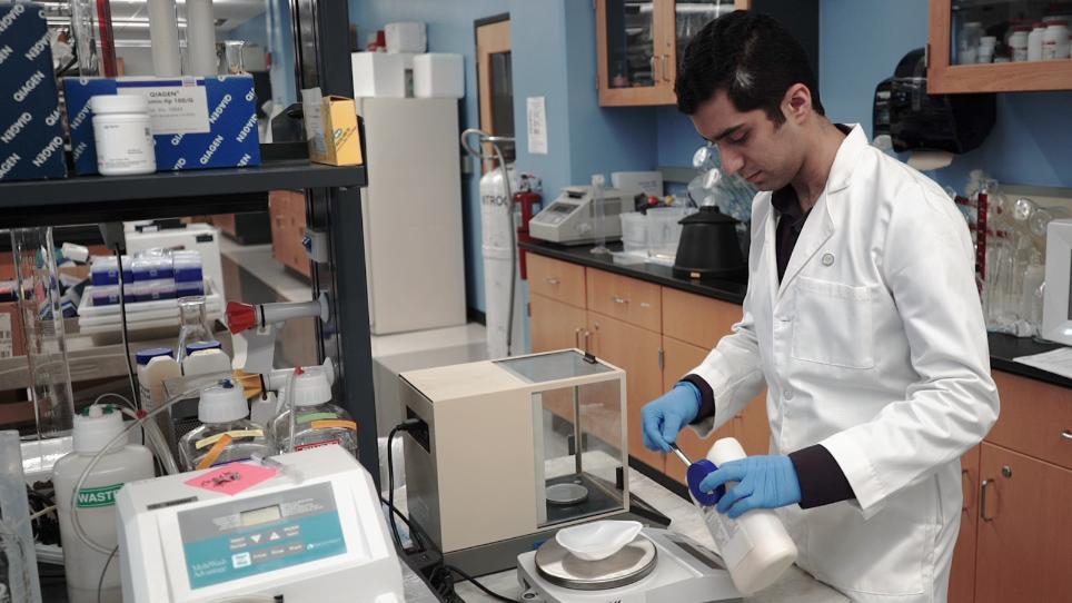 Studying Oxidative Stress Caused by the Mitis Group Streptococci in <em>Caenorhabditis elegans</em>