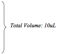 Volume total de 10 ul