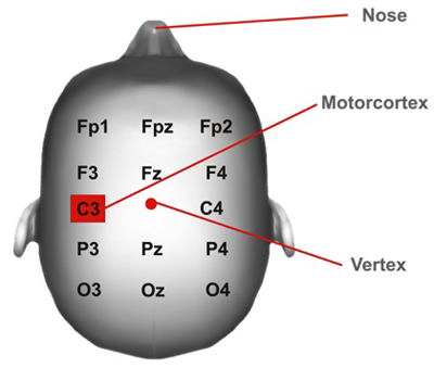 Electrode Positioning in Transcranial Direct Current ...