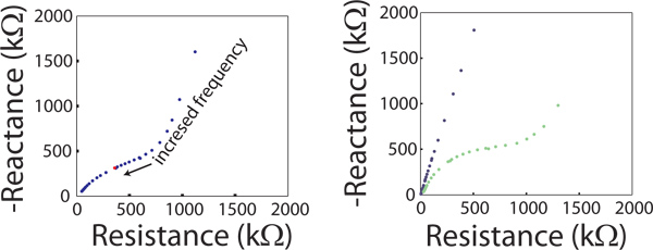 Voltage Biasing, Cyclic Voltammetry, & Electrical Impedance