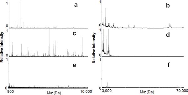 Radiocarbon dating masspektrometer