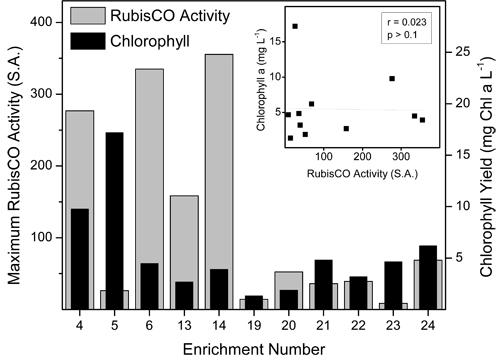radioisotoper anvendt i carbon dating Forklar forskellen mellem relativ dating og absolut dating
