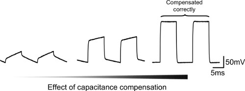 Fast Micro-iontophoresis of Glutamate and GABA: A Useful
