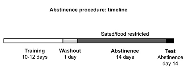 A Procedure to Study the Effect of Prolonged Food