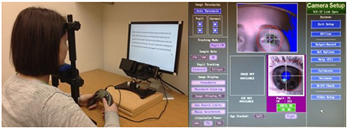 Using Eye Movements to Evaluate the Cognitive Processes Involved in