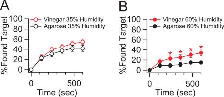 A Single Fly Assay For Foraging Behavior In Drosophila Protocol
