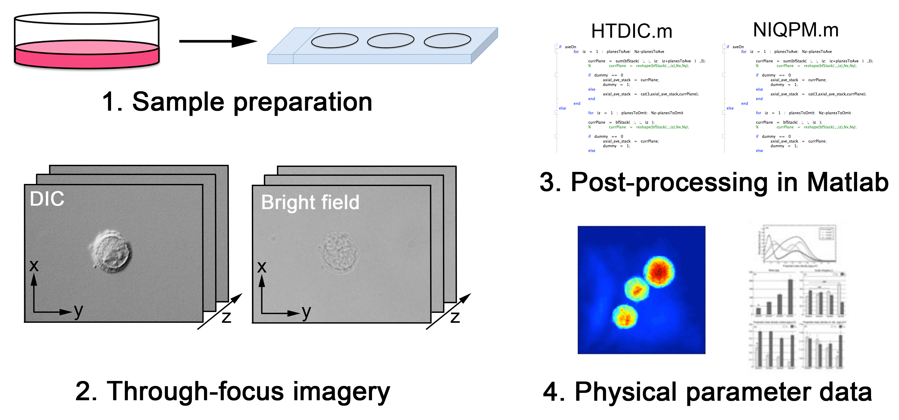 Quantitative Optical Microscopy: Measurement of Cellular