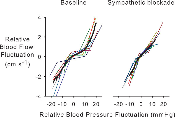 Assessing Cerebral Autoregulation via Oscillatory Lower Body