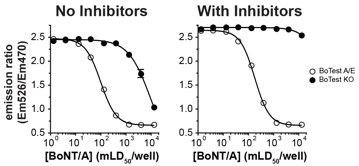 Isolation and Quantification of Botulinum Neurotoxin From