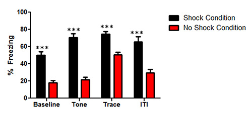 Trace Fear Conditioning in Mice | Protocol