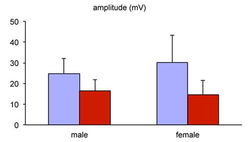 nerve conduction velocity calculation
