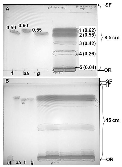 Thin Layer Chromatographic Tlc Separations And Bioassays Of Plant