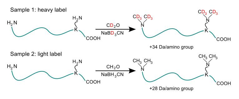 Proteinas epub de desnaturalizacion