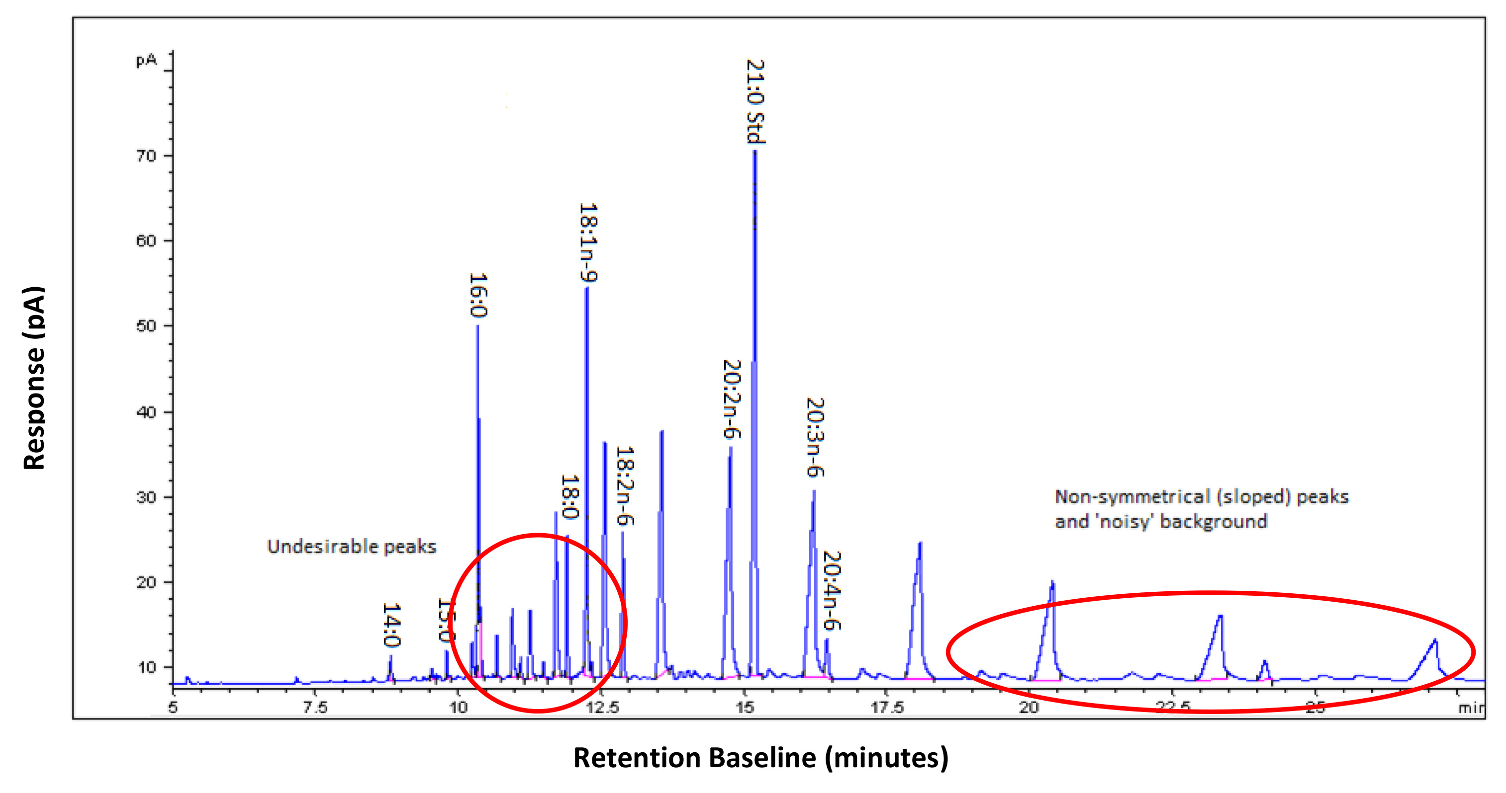 The Use Of Gas Chromatography To Analyze Compositional