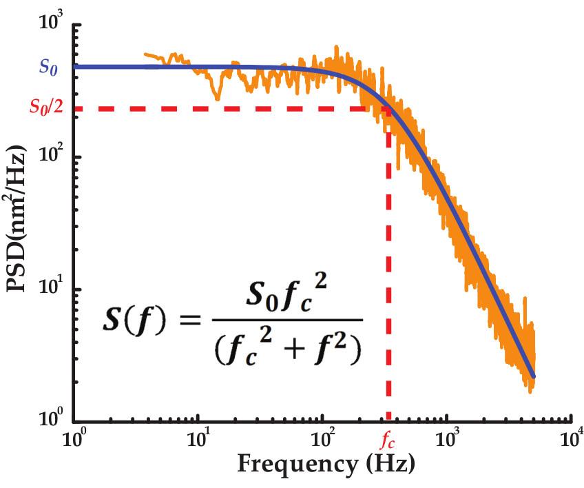 Nanomanipulation of Single RNA Molecules by Optical Tweezers