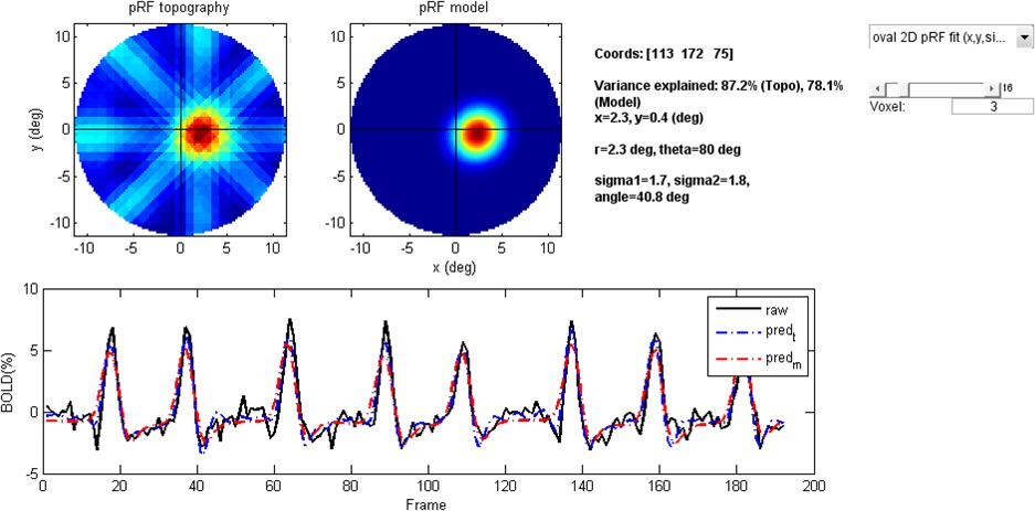 Topographical Estimation of Visual Population Receptive