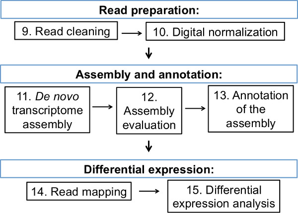 An Experimental and Bioinformatics Protocol for RNA-seq Analyses of