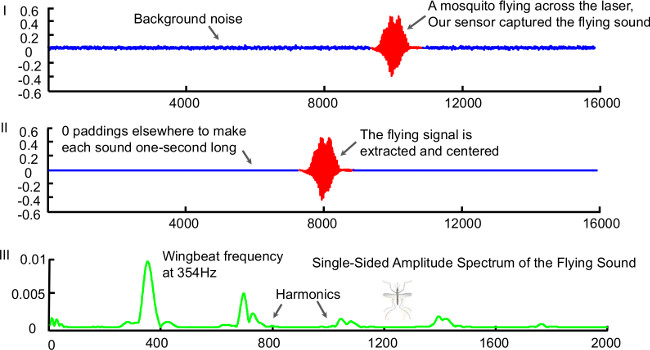 Flying Insect Detection and Classification with Inexpensive