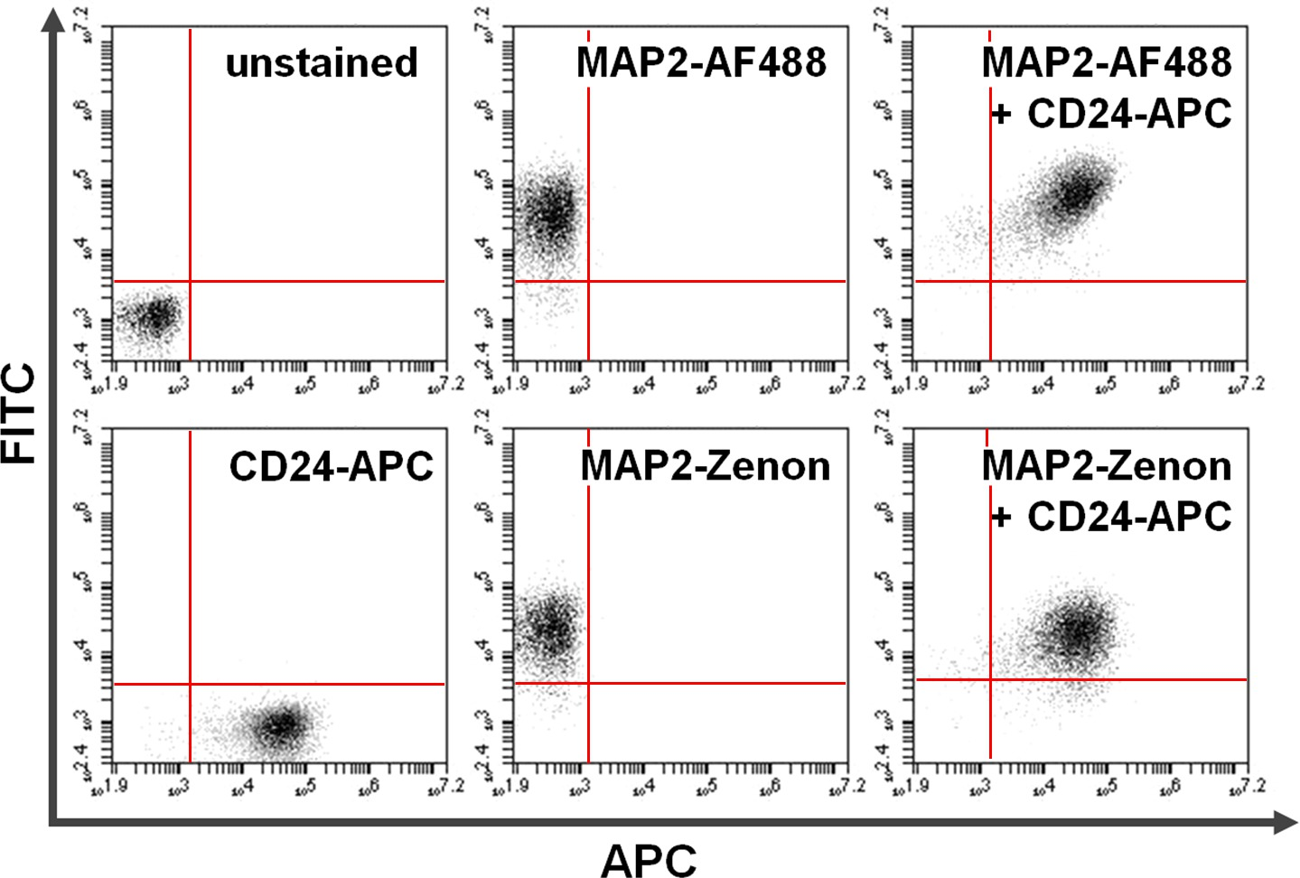Flow Cytometry Protocols for Surface and Intracellular Antigen