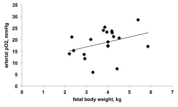 Instrumentation of Near-term Fetal Sheep for Multivariate
