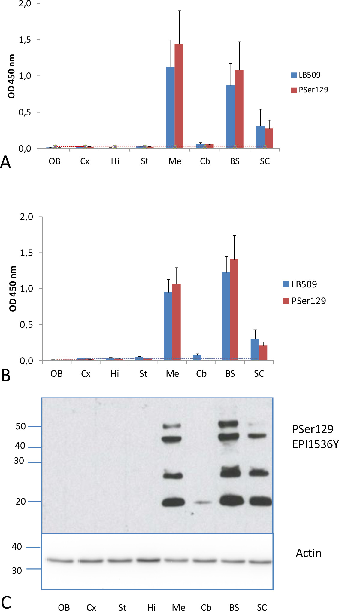 Detection of Disease-associated α-synuclein by Enhanced