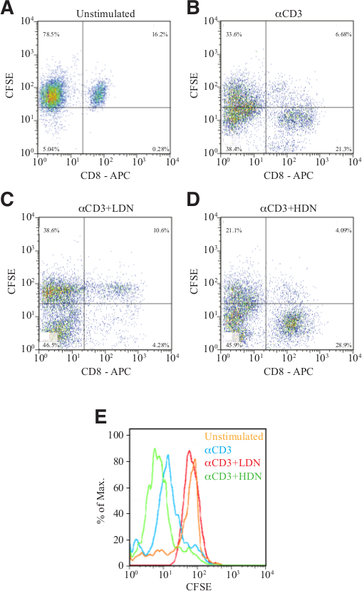 Isolation and Characterization of Neutrophils with Anti-Tumor