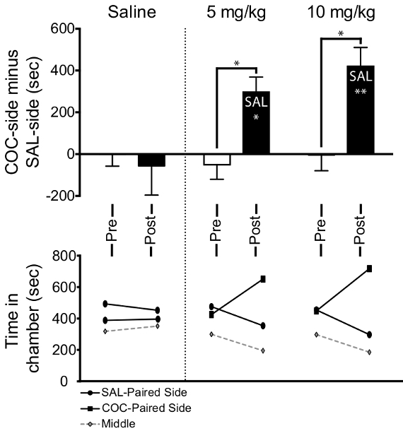 e939866f (Til toppen) I CPP, mus viste signifikant preferanse for et kammer  sammenkoblet med kokain (enten 5 eller 10 mg / kg), mens musene som fikk  saltvann ...