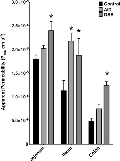 Ex Vivo Intestinal Sacs to Assess Mucosal Permeability in