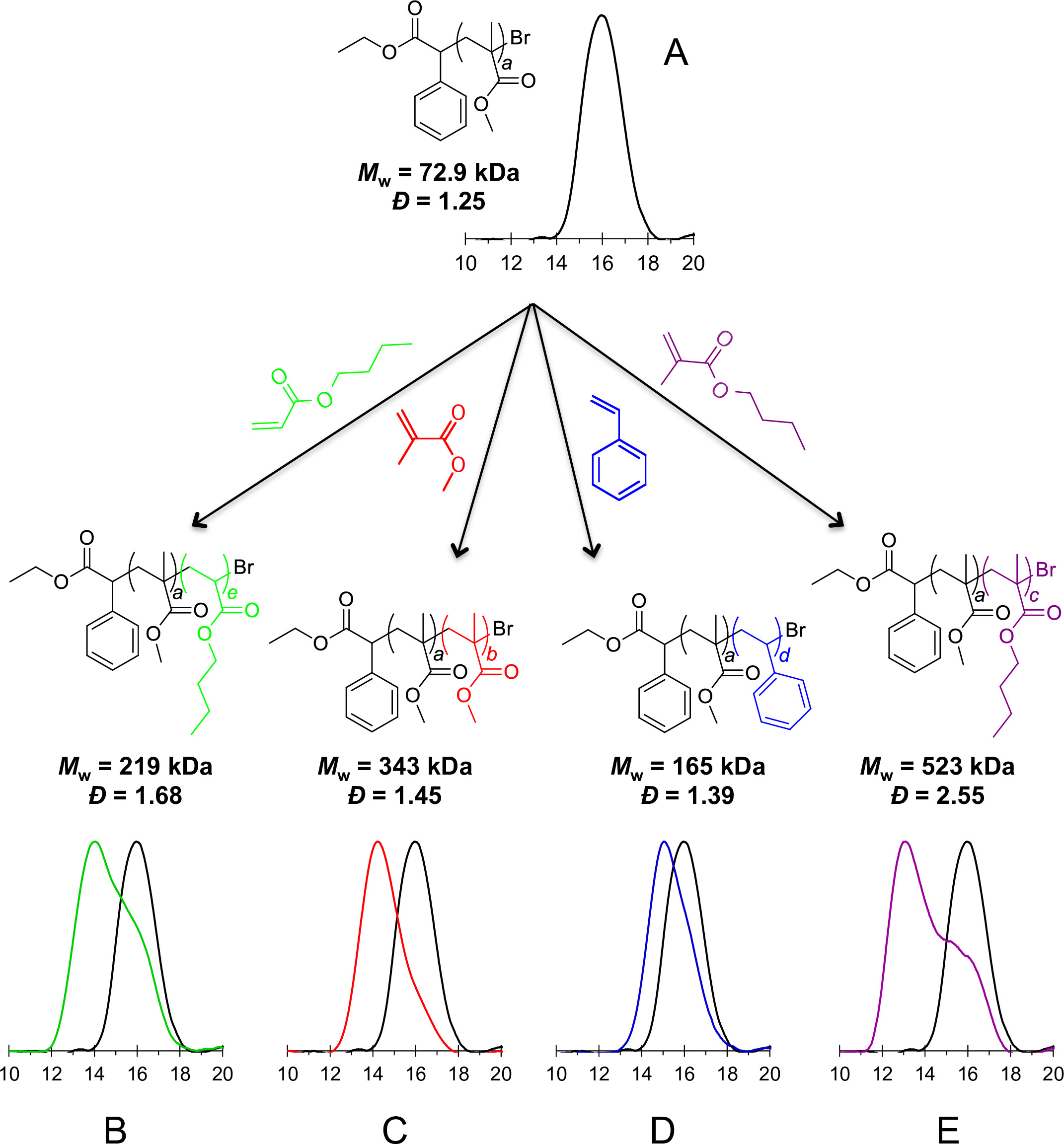Atom Transfer Radical Polymerization of Functionalized Vinyl