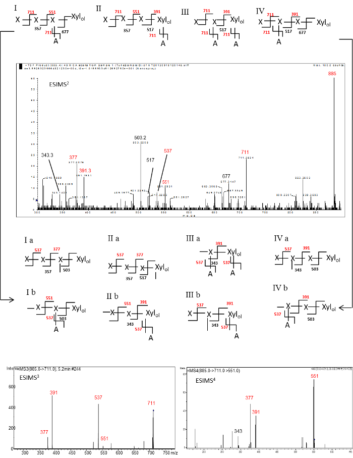 Sequencing of Plant Wall Heteroxylans Using Enzymic, Chemical