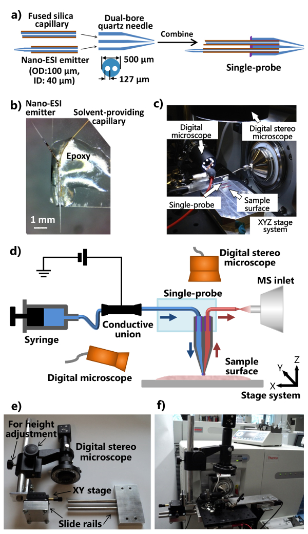 Applications of the Single-probe: Mass Spectrometry Imaging and