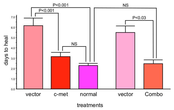 Adenoviral Gene Therapy For Diabetic Keratopathy Effects On Wound