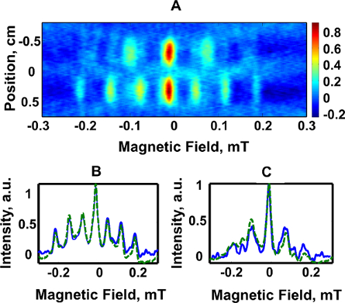 Rapid Scan Electron Paramagnetic Resonance Opens New Avenues