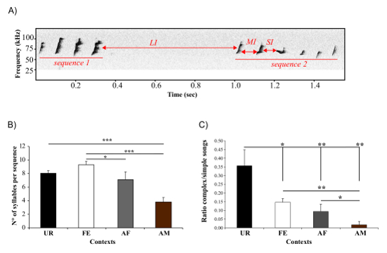 Eliciting and Analyzing Male Mouse Ultrasonic Vocalization (USV
