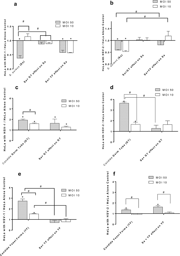 Determination of Biofilm Initiation on Virus-infected Cells