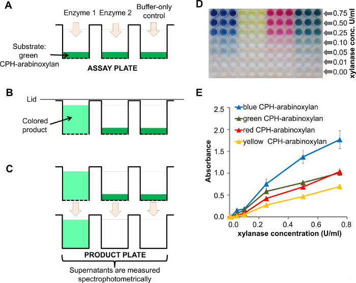 High-throughput Screening of Carbohydrate-degrading Enzymes