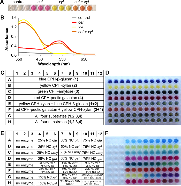 High-throughput Screening of Carbohydrate-degrading Enzymes Using