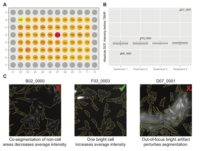 Cellular Redox Profiling Using High-content Microscopy