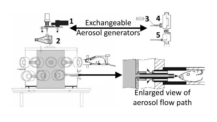 Dry Powder and Nebulized Aerosol Inhalation of