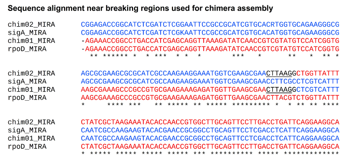 CAPRRESI: Chimera Assembly by Plasmid Recovery and