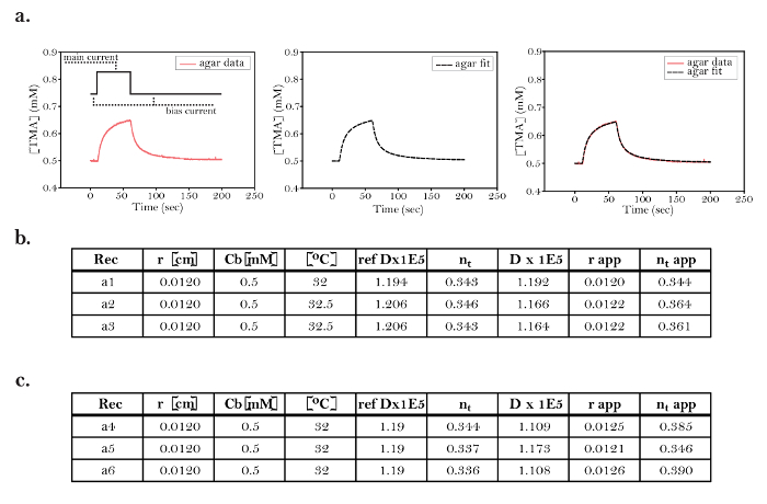 11764a794 Real-time Iontophoresis with Tetramethylammonium to Quantify Volume ...