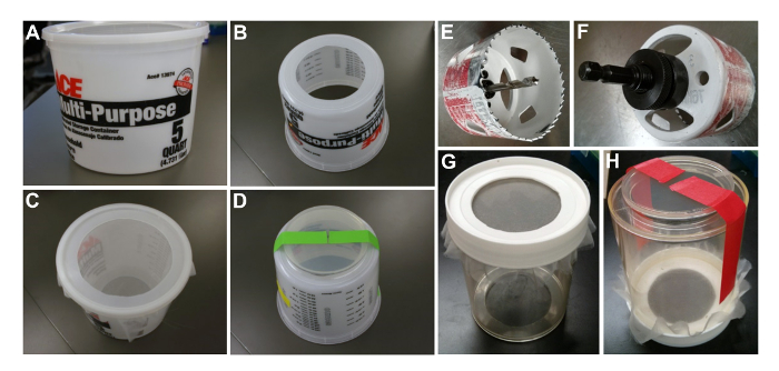 Medium-scale Preparation of Drosophila Embryo Extracts for