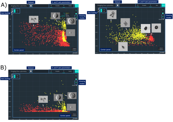 Microfluidic Imaging Flow Cytometry by Asymmetric-detection