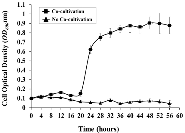 A Hydroponic Co-cultivation System for Simultaneous and Systematic
