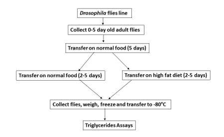 tabella comparativa di dieta e nutrizione