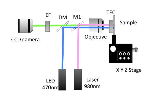 Trapping of Micro Particles in Nanoplasmonic Optical Lattice   Protocol