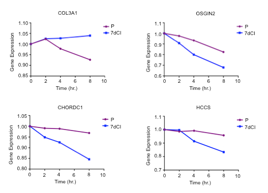 Determining Genome-wide Transcript Decay Rates in