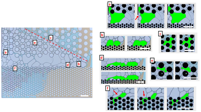 Microfluidic Devices for Characterizing Pore-scale Event