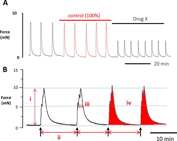 2fc4265c4 ... باللون الأحمر مصممة عن طريق تحديد تقلصات السابقة مباشرة لتطبيق المجمع  الاختبار (X المخدرات). فترة المراقبة هذه أيضا متساوية في الوقت المناسب  للتطبيق ل ...